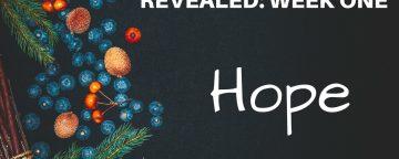 The Advent Season Revealed: Week One HOPE