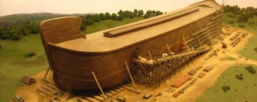 How are you preparing your ark?
