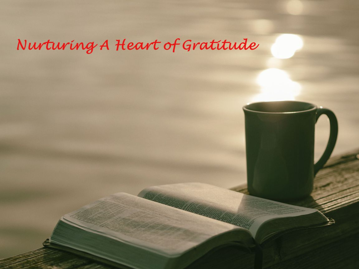 Nurturing A Heart of Gratitude